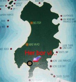 kæmpe rokke thailand